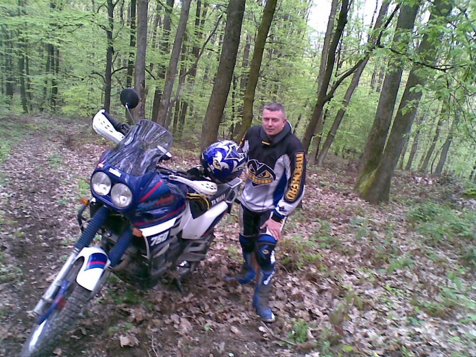 Po páde v lese