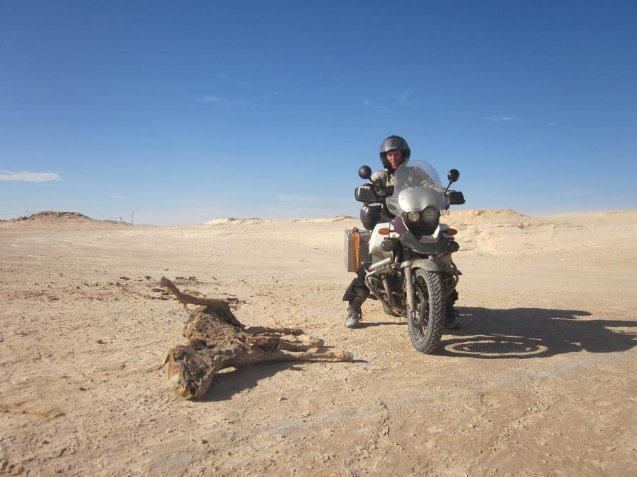 Do Dakaru a späť – článok