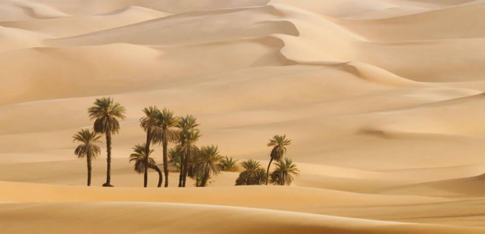Dakar 2020 bude v Saudskej Arábii!
