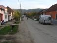 borlova 028