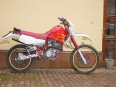 moto-palo