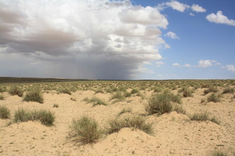 Prachová púšť